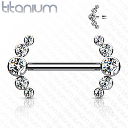 Nännikoru, Implant Grade Titanium Nipple Barbells with 5 Bezel Set CZ