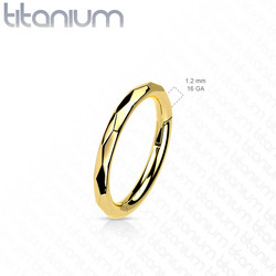 Lävistysrengas, Implant Grade Titanium Faceted Side Hoops in Gold