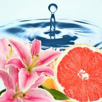Clean Type -tuoksuöljy (Nature's Garden)