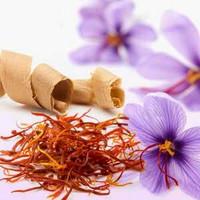 Saffron & Cedar 10 ml