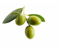 OliveM 1000, 50 g