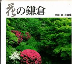 Hiroshi Harada: Blossoms of Kamakura