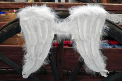 Suuret valkoiset sulkasiivet satiiniolkaimilla