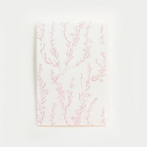 Kanerva postikortti valkoinen