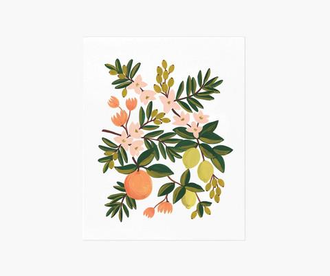Citrus floral-taidejuliste A4