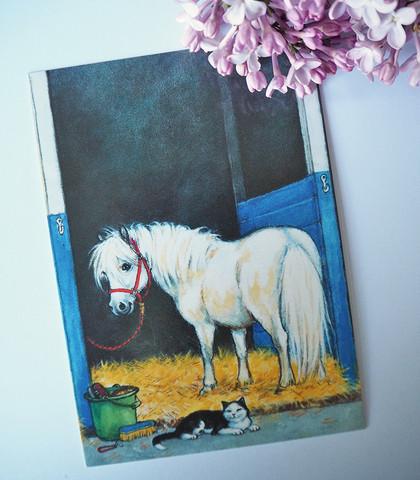 Sigge poni-postikortti