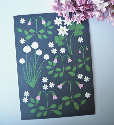 Kukkaniitty, musta-postikortti