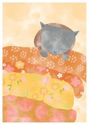 Kissan päiväuni-postikortti