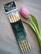 Bambu sukkapuikot 20 cm 10.0 mm