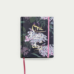 Syysmuutto one line a day-3 vuoden päiväkirja