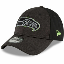 New Era - 9Forty Shaded Front Seattle Seahawks Adjustable Hat
