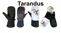 RANGIFER TARANDUS-REINDEER-PORO KINNAS