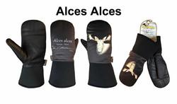 ALCES ALCES-MOOSE-HIRVI KINNAS