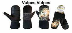 VULPES VULPES-FOX-KETTU KINNAS
