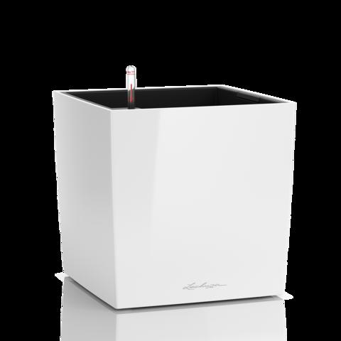 Cube Premium all-in 30cm
