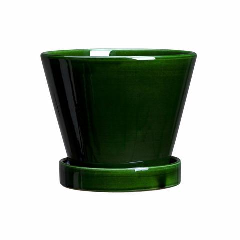Bergs Potter Julie green