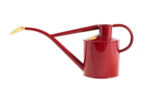 Haws watering can Burgundy