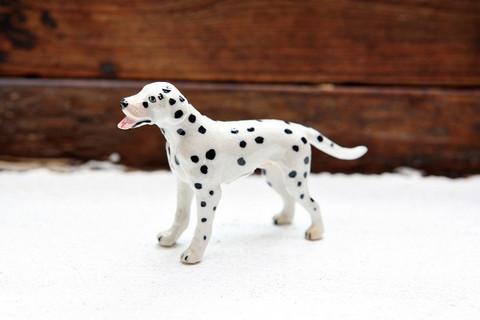 Miniatyyrinen dalmatialainen (seisova)
