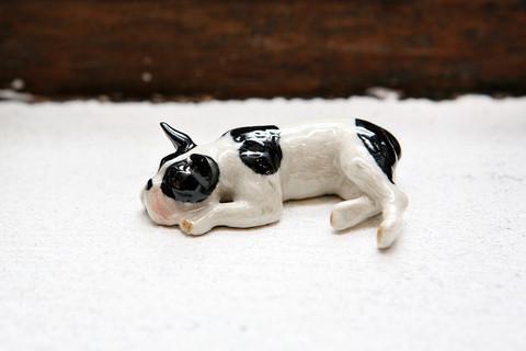 Ranskanbulldog miniatyyrikoira