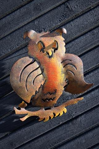Metallinen pöllö seinään