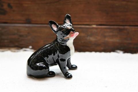 Ranskanbuldoggi miniatyyrikoira