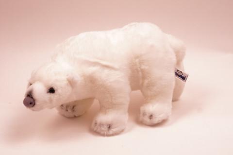 Iso jääkarhu