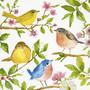 Linnut ruokaservetti