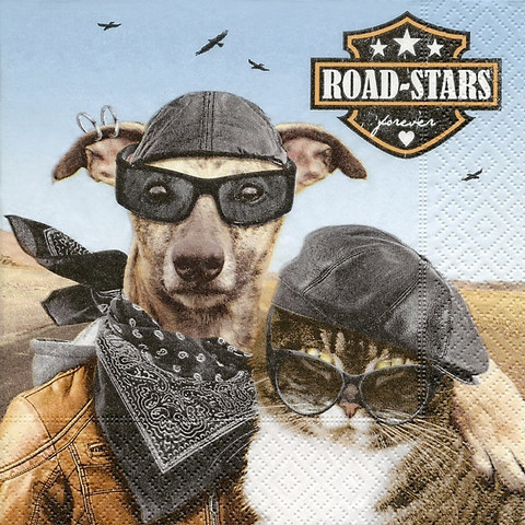 Road star ruokaservetit