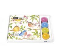 Linnut servetti lahjapakkaus