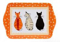 Minitarjotin odottavat kissat