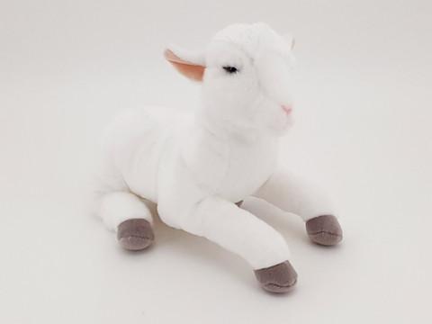 Valkoinen karitsa