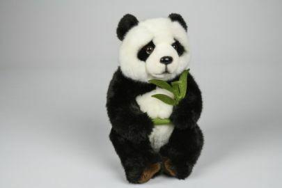 Istuva panda