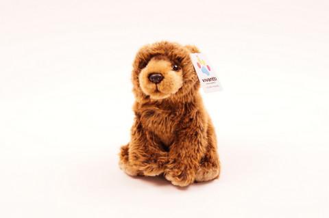 Pieni istuva karhu
