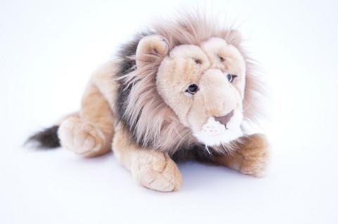 Komea leijonauros