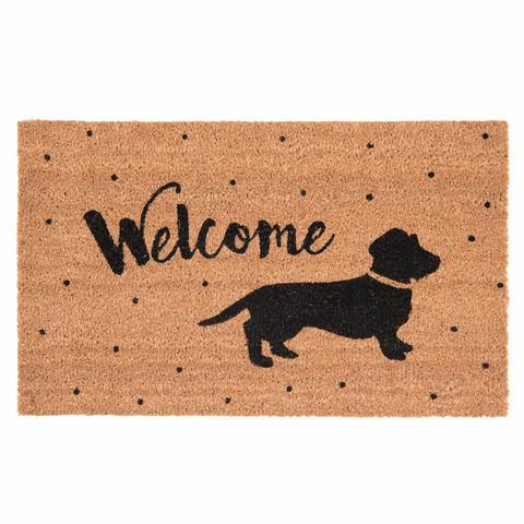 Eteismatto Welcome koira