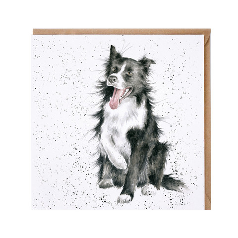 Wrendale bordercollie kortti