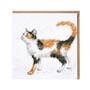 Wrendale värikäs kissa kortti