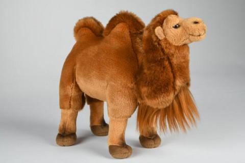 Kameli pehmoeläin