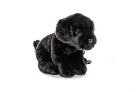Musta labradorinnoutaja pehmo