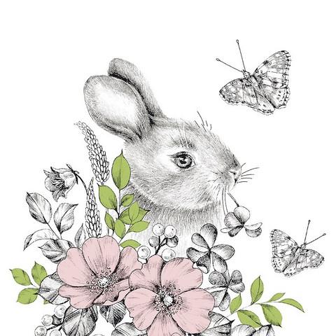 Pupu ja perhoset ruokaservetti