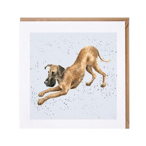 Wrendale tanskandoggi kortti