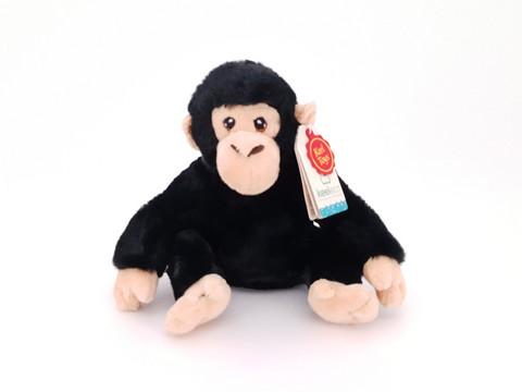 Simpanssi eco