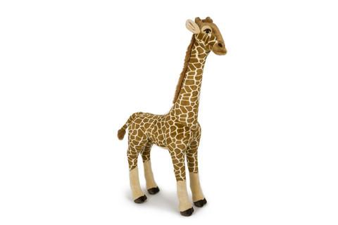 Huiman korkea kirahvi