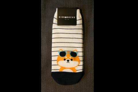 Aurinkolasikoira sukat