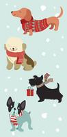 Koirat talvitamineissa nenäliina