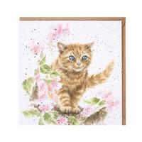 Wrendale oranssi kissa kortti