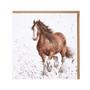 Wrendale ruskea hevonen kortti