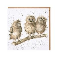 Wrendale pöllönpojat kortti