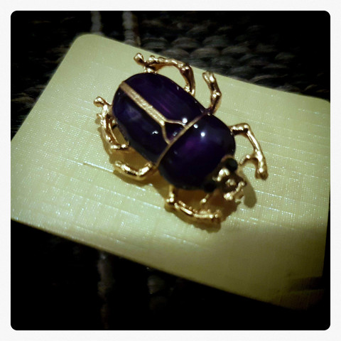 Beetle Bug Brooch