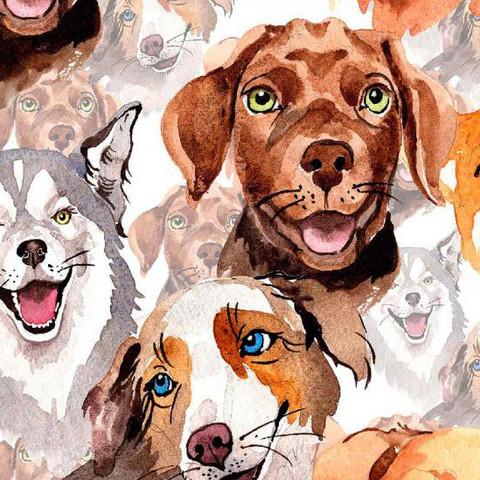 Digitrikoo: Big dogs, valkoinen